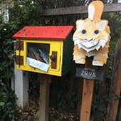 Accepting applications for Little Free Library Incentive Program