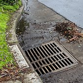 Residents urged to never blow/rake leaves into the street or storm drain