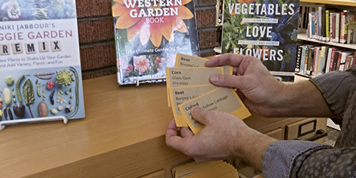 Hands holding seed packets in front of a re-purposed library card catalog
